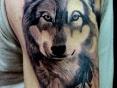 Wolf (Oskar)